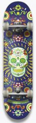 HYDROPONIC MEXICAN Navy Skull COMPLETE 8.25